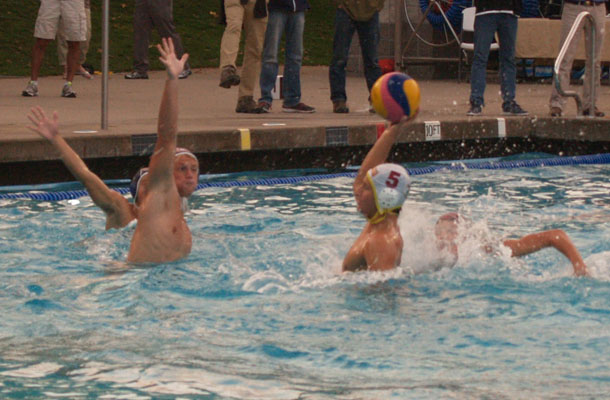 Water+Polo