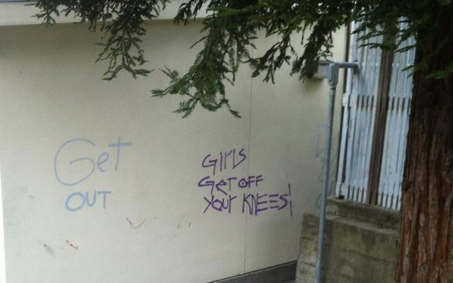 Graffiti Crime Offensive, Costly
