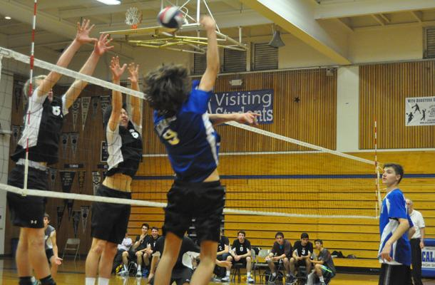 Volleyball Nets Win over Dons