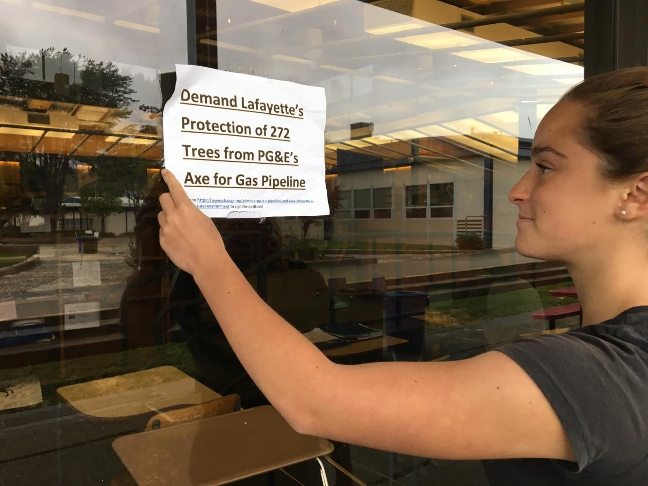 Pipeline Installation Threatens Lafayette Trees