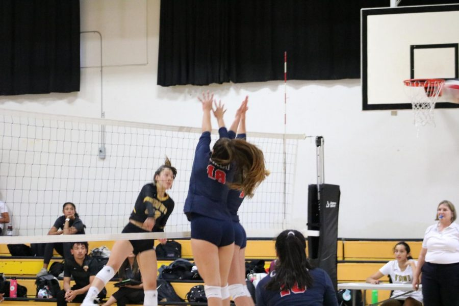 Girls' Volleyball Faces Division 1 Challenge